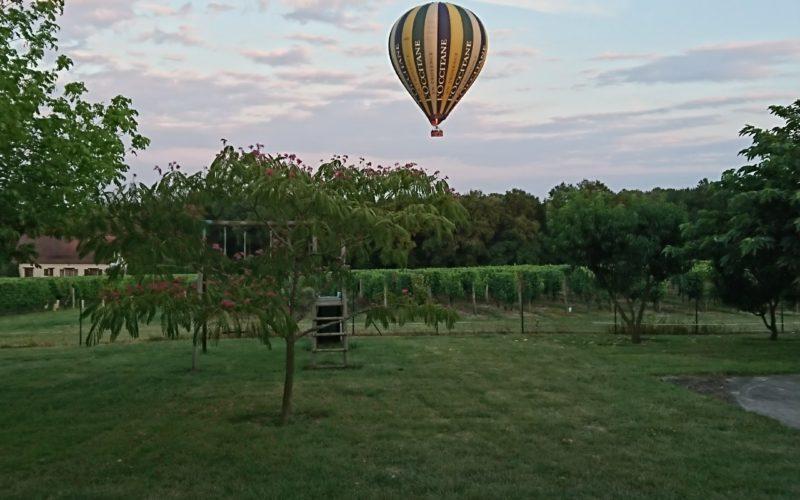 Charmante petite maison au cœur du Vignoble !
